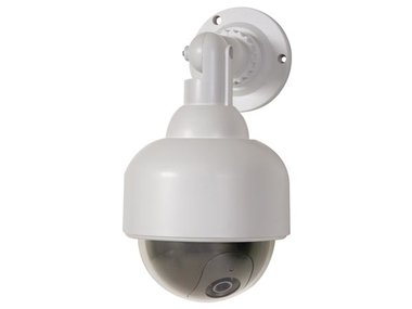 NEP DOME CAMERA MET RODE LED (CAMD8)