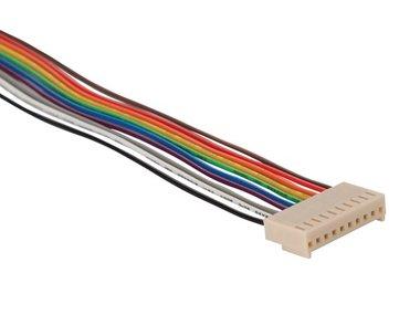 PRINTCONNECTOR - VROUWELIJK - 10 CONTACTEN / 20cm (BTWF10)